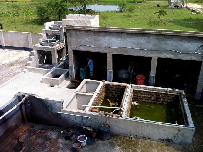 廃水浄化システム